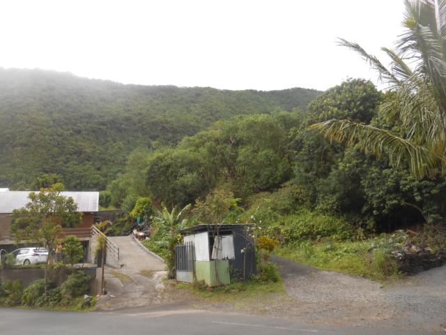 La rivière Langevin, La Réunion Dscn7124
