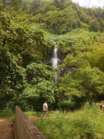 L'anse des cascades, La Réunion Dscn7216