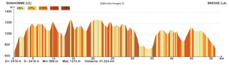 La bête des Vosges ... Profil10