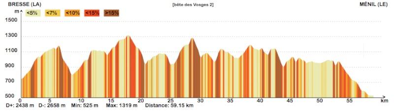 La bête des Vosges ... Vosges10