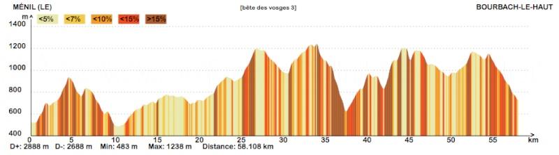 La bête des Vosges ... Vosges11