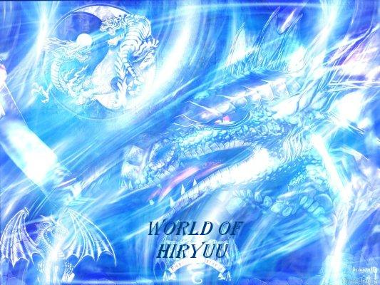 World of Hiryuu