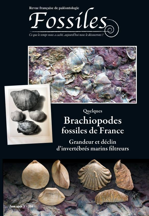 Nouvelles publications (Pacaud) Brachi11
