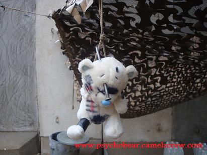 Psychobear and friends Dsc00818