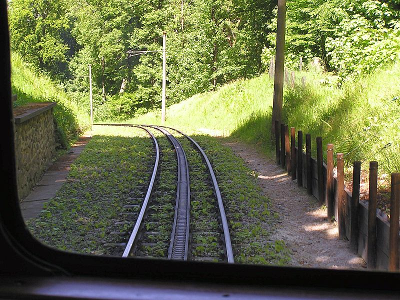 Mit der Zahnradbahn auf den Drachenfels 2510