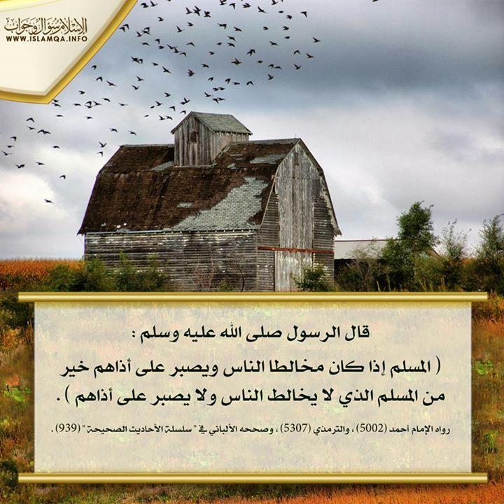 Marque ton passage au forum par une aya ou un hadith - Page 4 Med_ra11