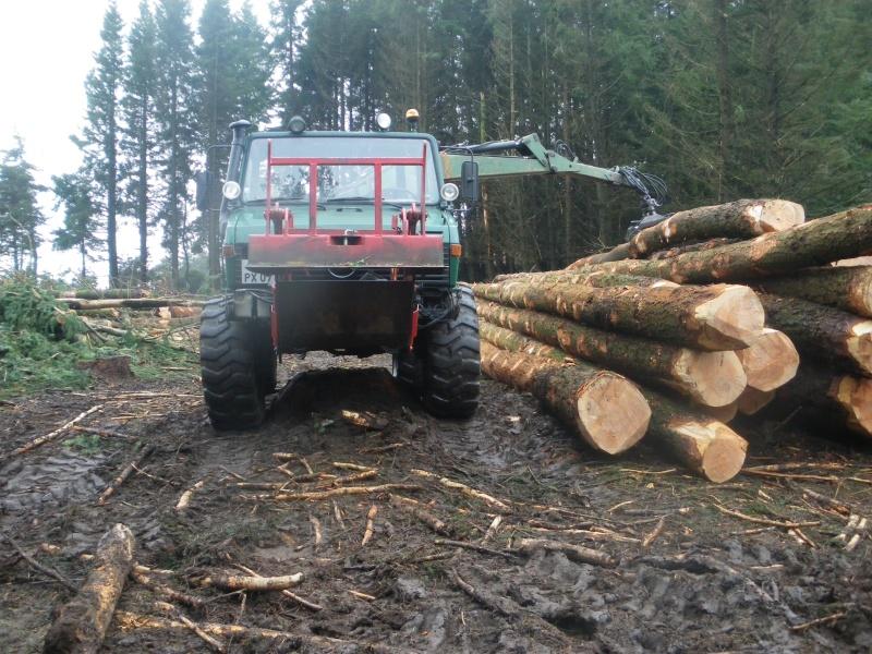 forestiers de roger : cinquieme partie - Page 38 Imgp2010