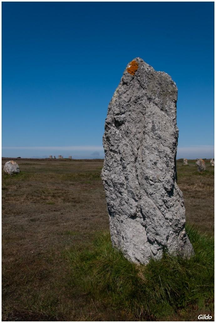 Alignement Mégalithique de Lagatjar - Camaret-sur-Mer - Bretagne Bretag10
