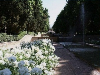 JARDINS D'ORIENT Iran10