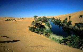 LES OASIS Libya_10