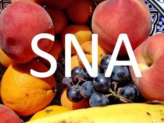 Student Nutrition Association