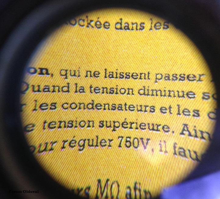 [Chroniques du Bunker de L'Apocalypse] - Page 2 Loupe10