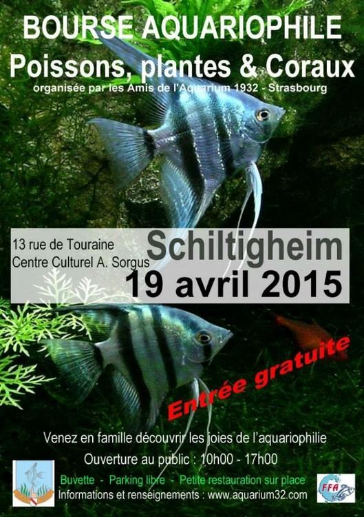 Bourse AA 1935 à Schiltigheim - Dimanche 19 avril 2015 Bourse11