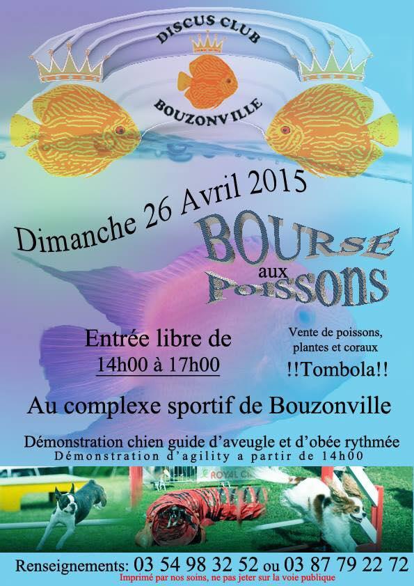 Bouzonville 26/04/15 Bouz10