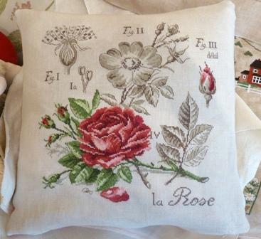 Une nouvelle Rose de Véronique Enginger P1040711