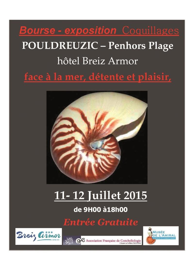 2015 Bourse de Pouldreuzic - 11 & 12 / 07 - Finistère - Baie d'Audiern5 Affich10