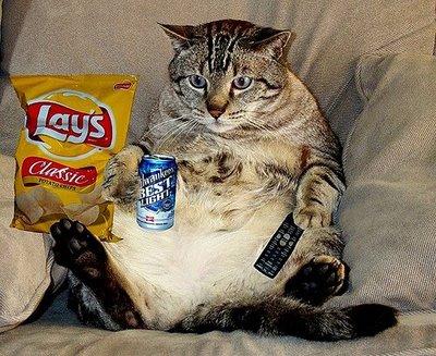 Bonne fête Killroytech Couch-10