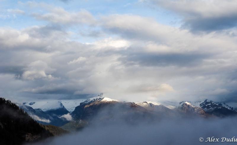 Jour de brouillard!!! P4270210