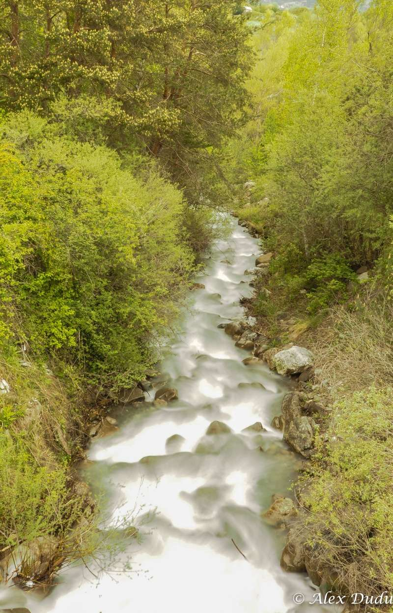 Au milieu coule une rivière P5090012