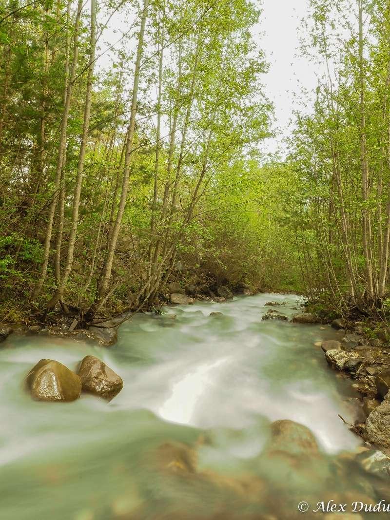 Au milieu coule une rivière P5090013