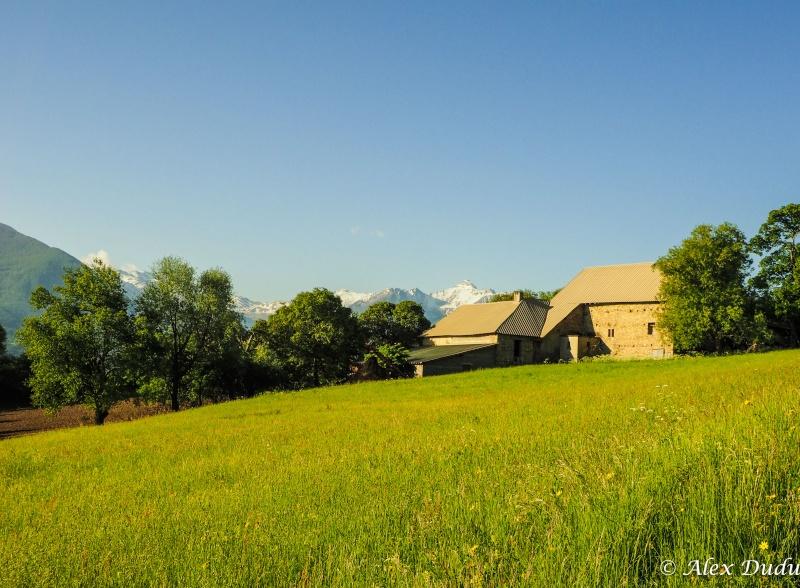 La maison dans la prairie!!! P5180112