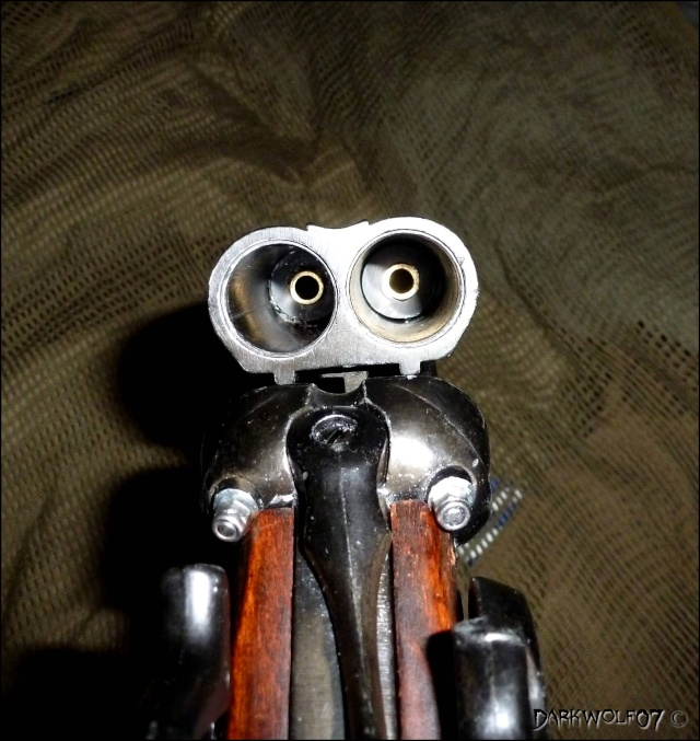 [DarkyGarage]  Projet Double Barrel Gun sur base coach gun denix P1030313