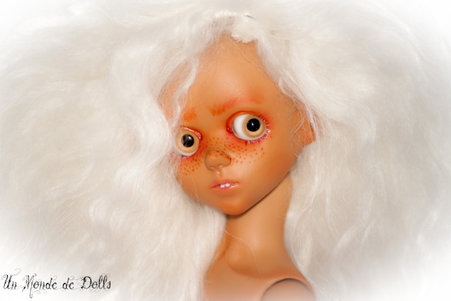 Un Monde de Dolls Custom Img_3111