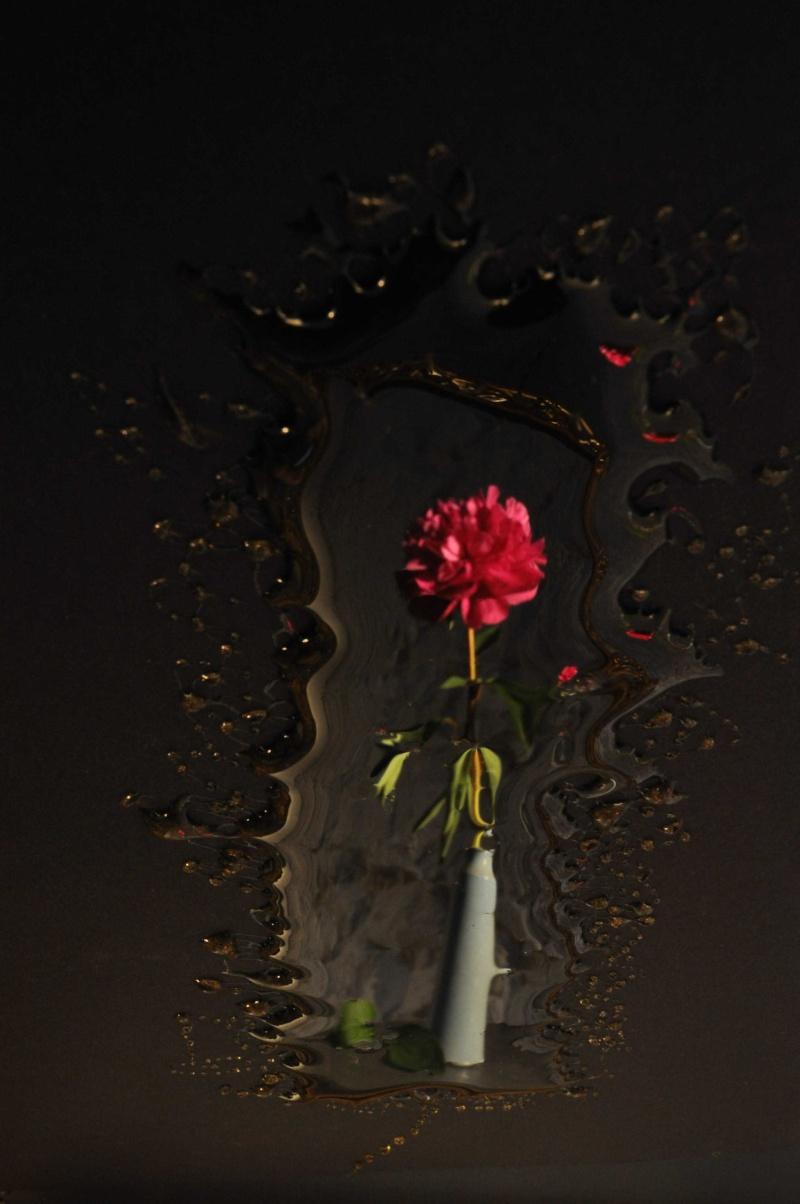 Jean-Yves Amir, peintographies Pivoin10