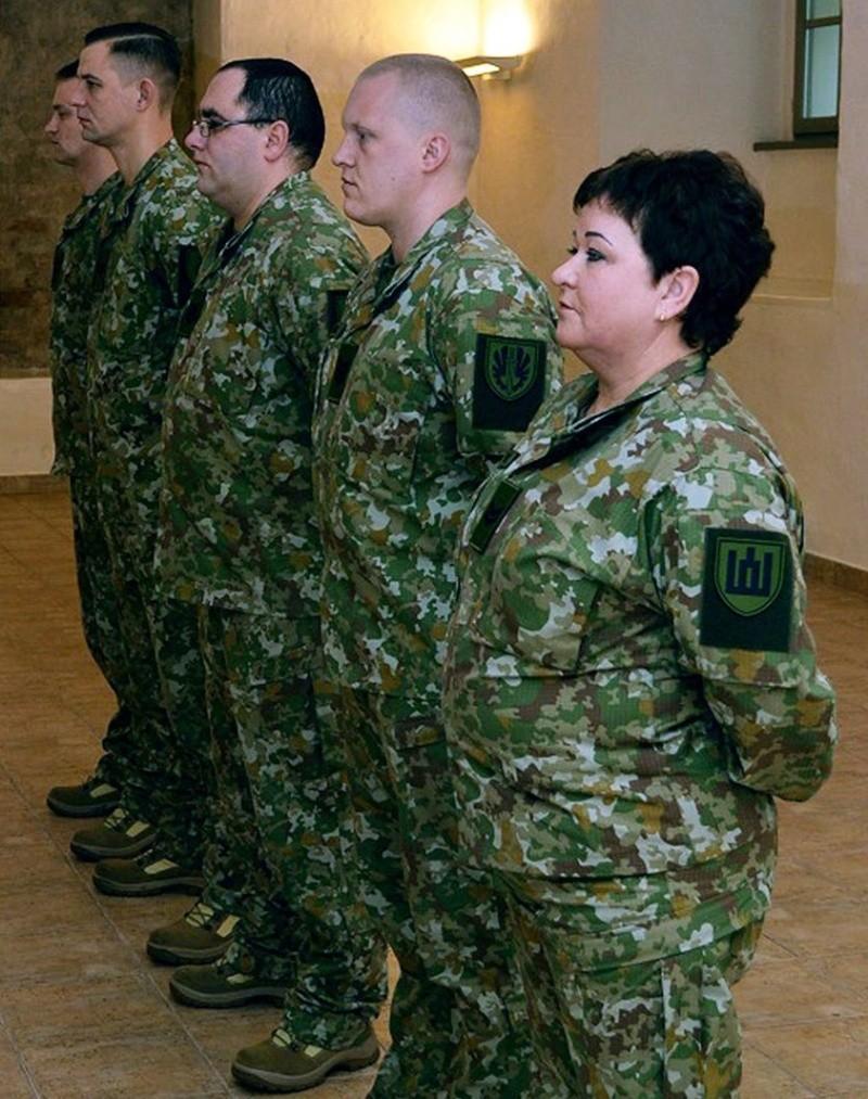 New Camouflage( 2014-   ) Ltlk11