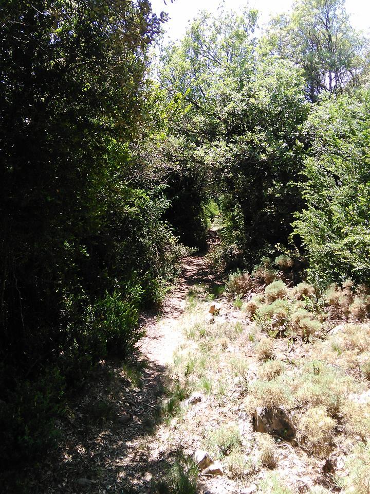 AINSA (Espagne) 10440910