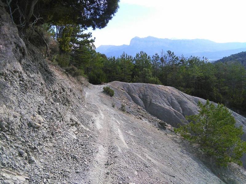 AINSA (Espagne) 11209510
