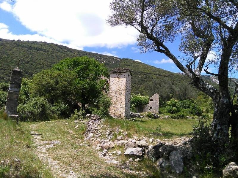 AINSA (Espagne) 11245710