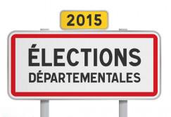 Elections Départementales 22 et 29 Mars 2015: les résultats et commentaires - Page 3 Pannea10