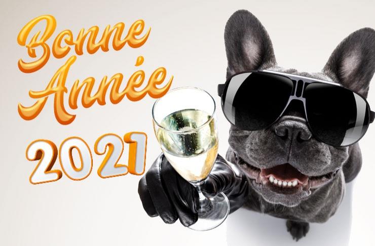 Bonne Année 2021 20201210
