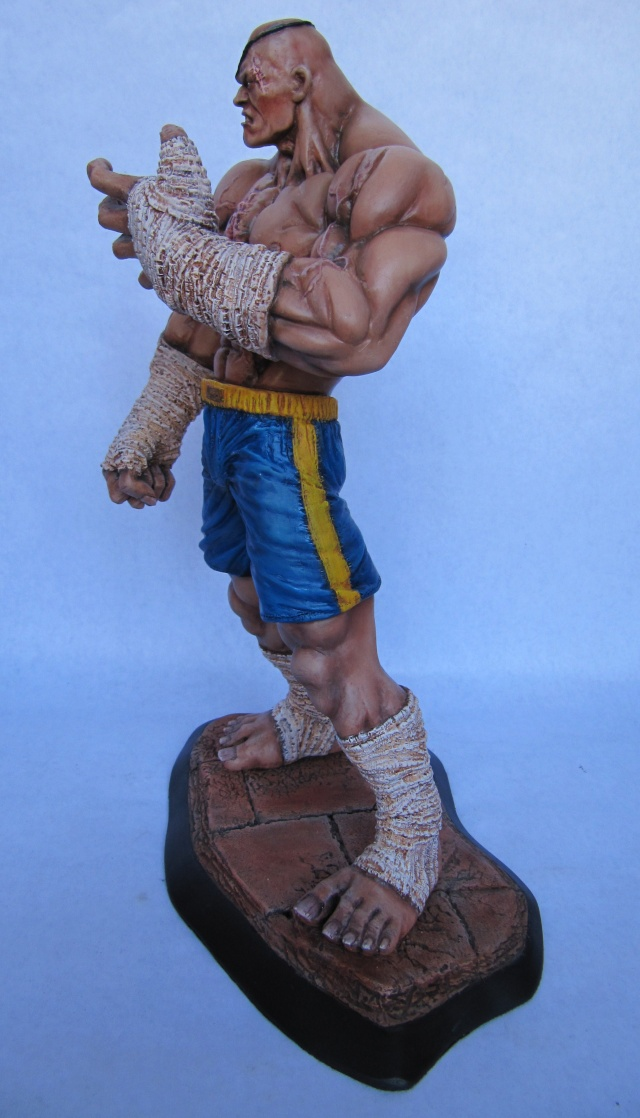 repaint statue weta sideshow bowen . - Page 5 Img_6613