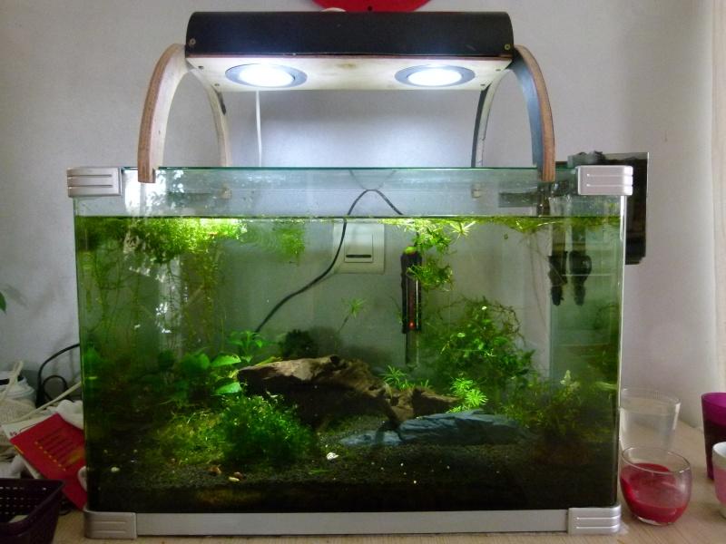 rampe maison Aquari21