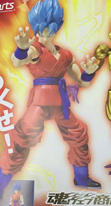 Figuarts Dragon Ball Z (Bandai) - Page 3 14293011