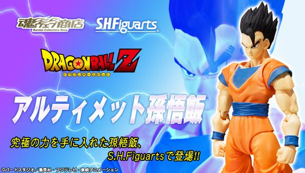 Figuarts Dragon Ball Z (Bandai) - Page 3 14296810