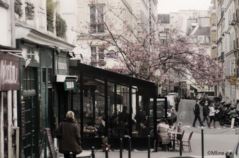 Sortie ANNIVERSAIRE 2015 PARIS 1I AVRIL. - Page 2 Mlin9511