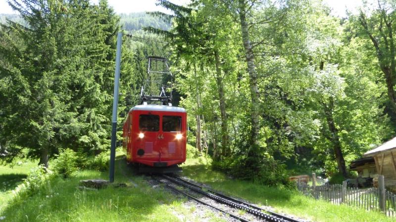 Photos train du Montenvers - Page 2 P1000612