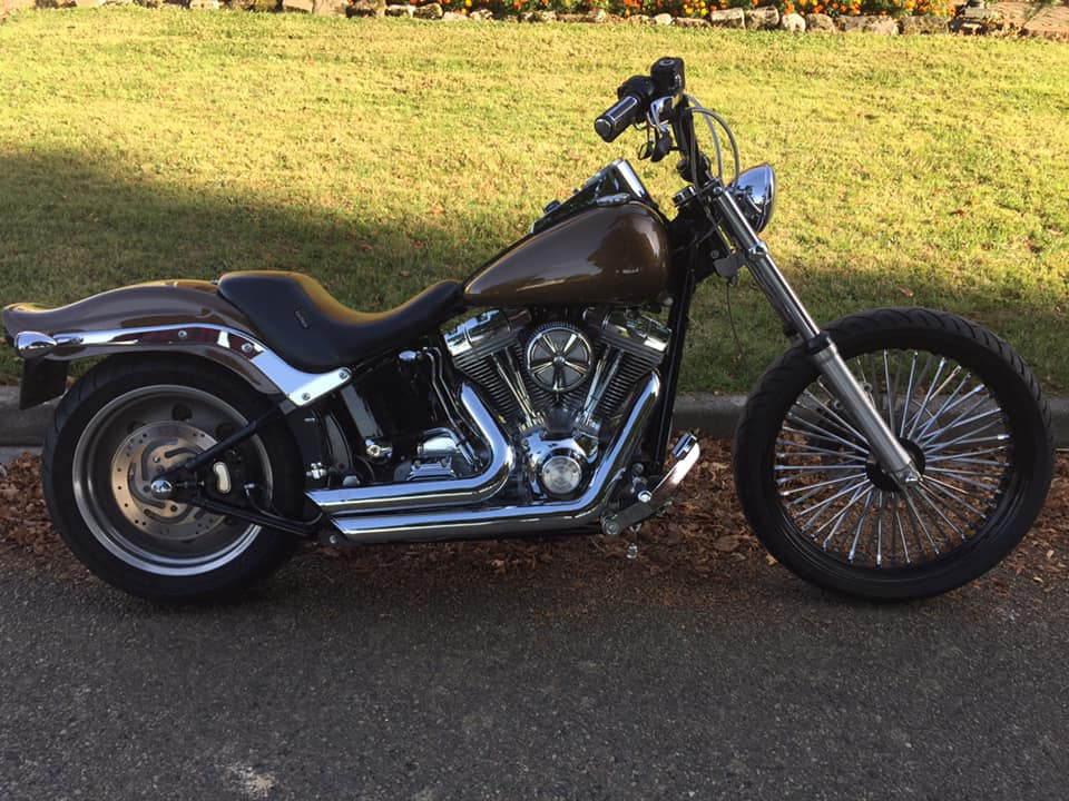 softail standard ou custom  42788011