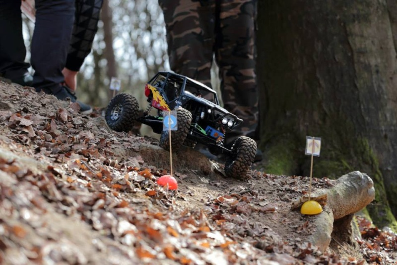 1er challenge scales-crawlers en Belgique Stam10