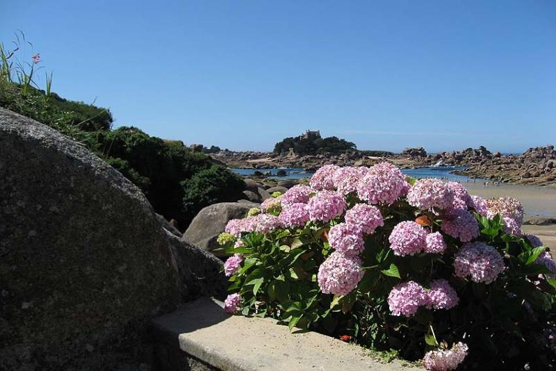 La Côte de Granite Rose à Ploumanac'h - Page 2 Plouma10