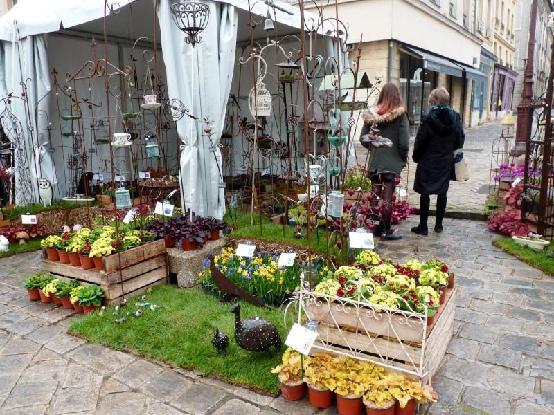 Fête plantes à Versailles 78 P1190511