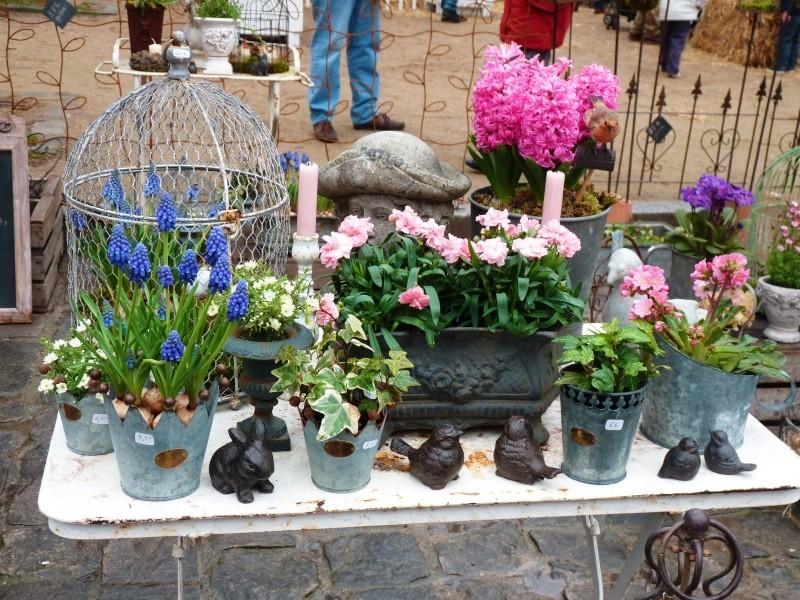 Fête plantes à Versailles 78 P1190512