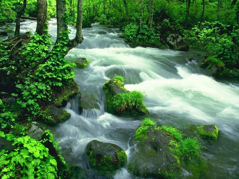 Rêver avec le réel, paysages - Page 13 River-10