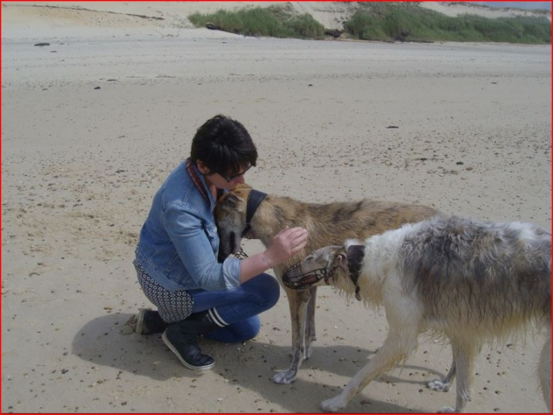 Notre beau et gentil duque de nouveau à l'adoption Adopté  - Page 5 Duque717
