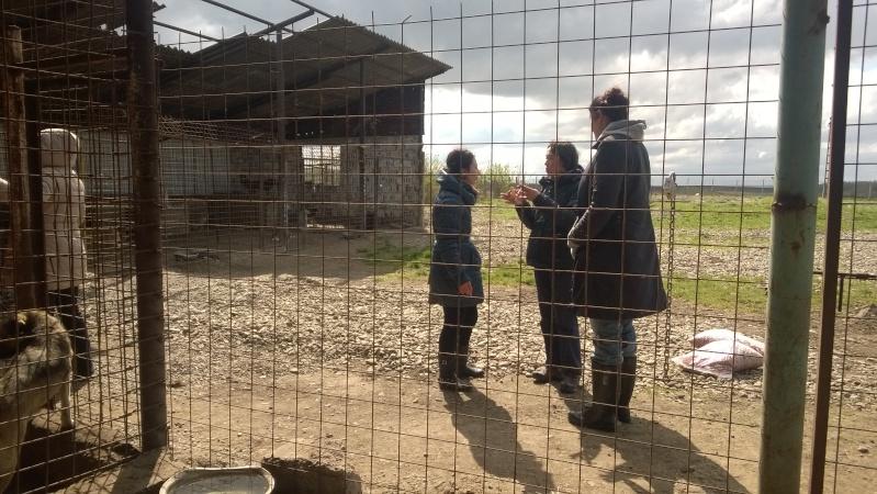 Voyage en Roumanie du 20 au 27 avril 2015 Wp_20137