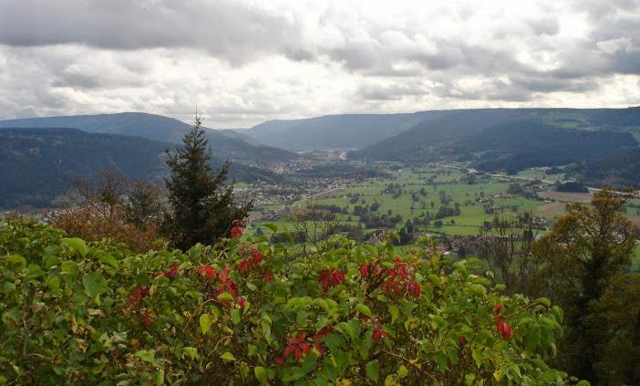 Découvrez les Vosges avec le forum Vosges Passions - Portail Dsc08510