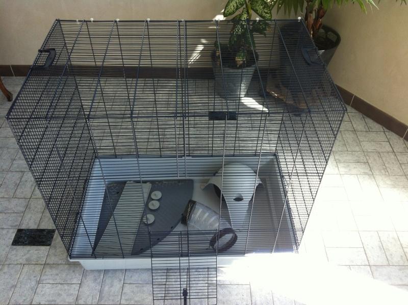 a vendre cage savic freddy 2max Img_2413